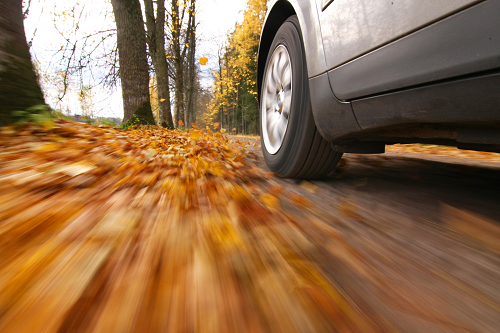 a close up of a car tire driving on a leaf covered road